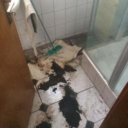 Vorher: Reinigung eines Badezimmers inkl. Desinfektion
