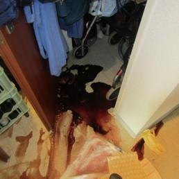 Vorher: Reinigung Sturzunfall und Todesfall durch Blutverlust