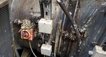 Taubenkotentfernung an Rauchgasdruckanlagen in Düsseldorf inkl. Desinfektion