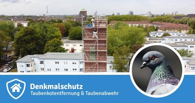 Taubenkotbeseitigung und Taubenabwehr unter Berücksichtigung des Denkmalschutzes