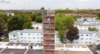 Taubenkotentfernung und Taubenabwehr unter Berücksichtigung des Denkmalschutzes